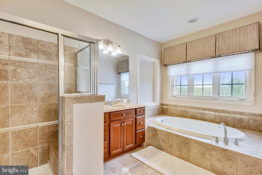 Master bath with seperate shower and tub. - 18290 BUCCANEER TER, LEESBURG