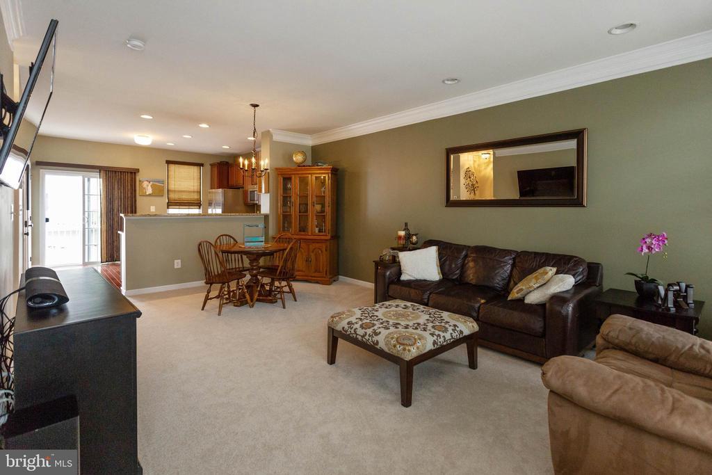 Family room - 42914 PAMPLIN TER, CHANTILLY