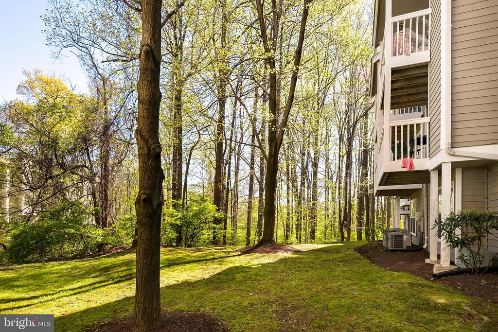 - 10715 HAMPTON MILL TER #120, ROCKVILLE