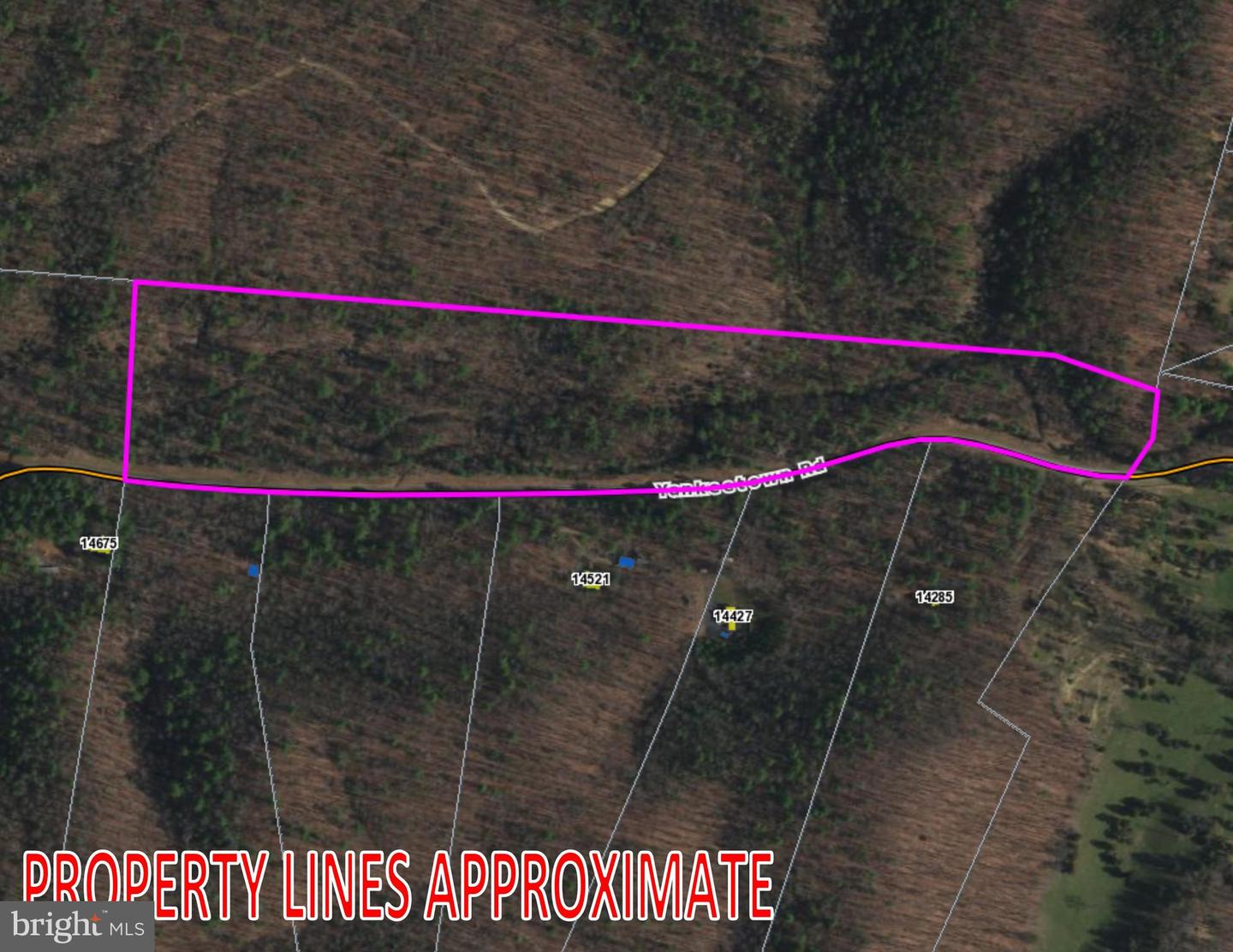 Land for Sale at Fulks Run, Virginia 22830 United States