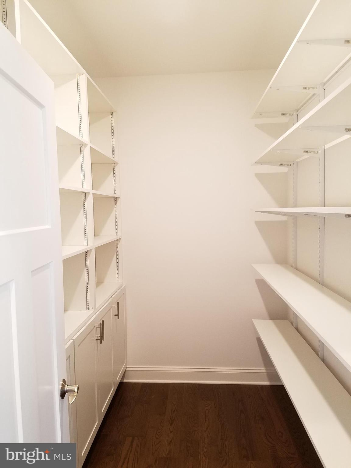 Spacious pantry with additional storage.