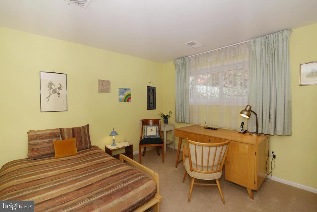 LL 4th bedroom - 3610 PRINCE WILLIAM DR, FAIRFAX