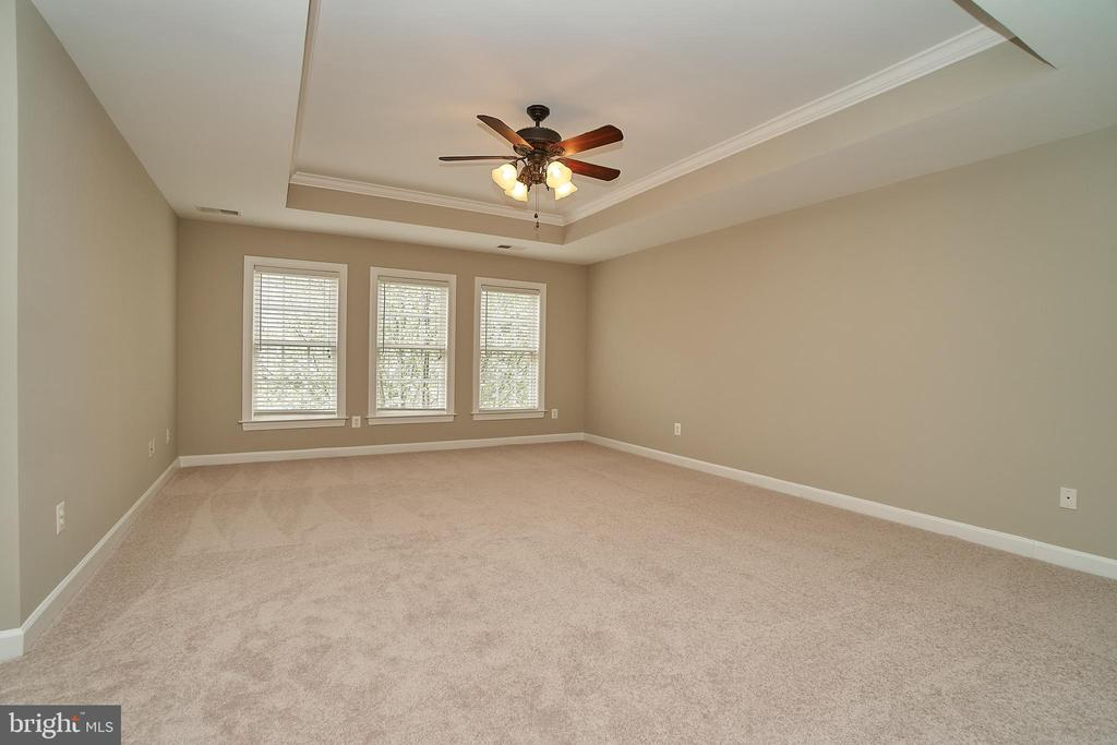 Master Bedroom with New Carpet and Paint - 47646 MID SURREY SQ, STERLING