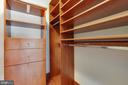 Closet with built ins - 2400 CLARENDON BLVD #308, ARLINGTON