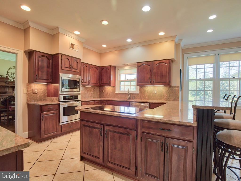 Remodeled kitchen with granite countertops - 20594 BROADNAX PL, ASHBURN