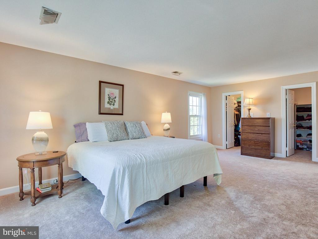 Master suite with two walk in closets - 20594 BROADNAX PL, ASHBURN