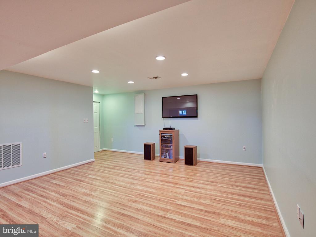 Lower level rec room - 20594 BROADNAX PL, ASHBURN