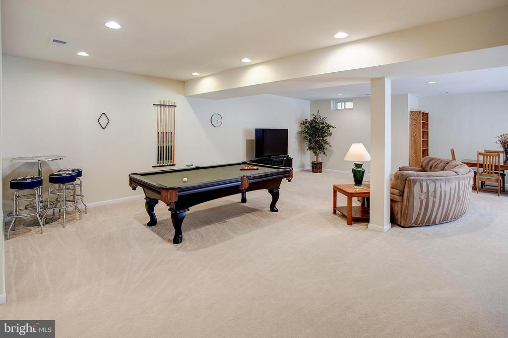 Lower level game area - 43137 BUTTERFLY WAY, LEESBURG