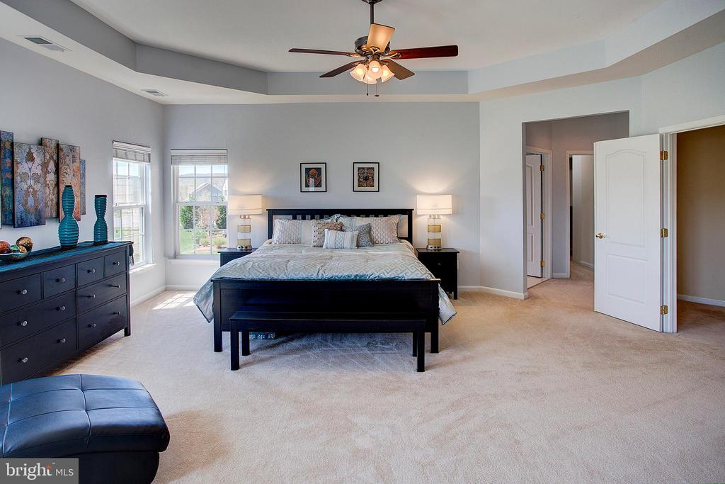 Master bedroom has tray ceiling - 43137 BUTTERFLY WAY, LEESBURG