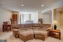 Lower level family room - 43137 BUTTERFLY WAY, LEESBURG