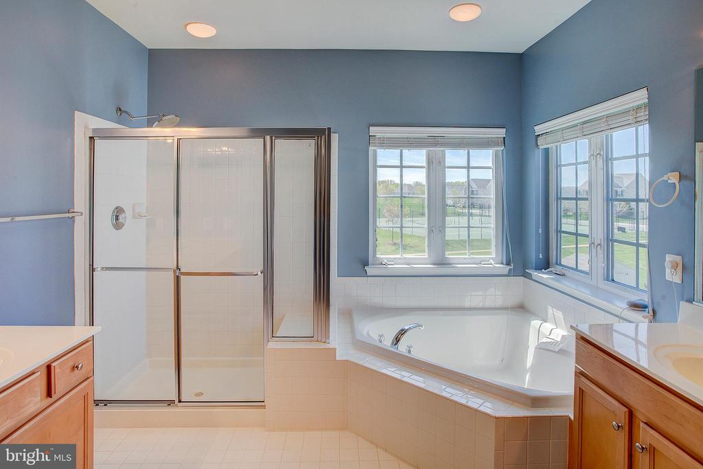Master bathroom - 43137 BUTTERFLY WAY, LEESBURG