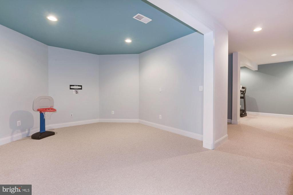 Play Area in the Basement - 43341 BARNSTEAD DR, ASHBURN