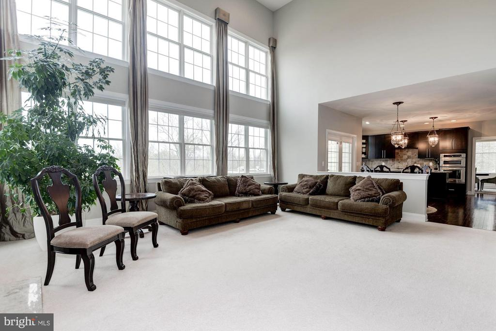 Bright Family room overlooking Woods - 43341 BARNSTEAD DR, ASHBURN