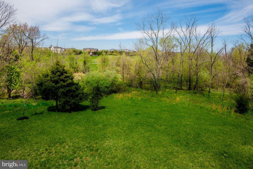 Enjoy the open space in the Backyard - 43341 BARNSTEAD DR, ASHBURN