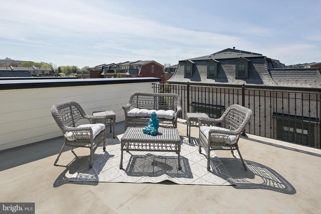 Rooftop Patio - 10882 SYMPHONY PARK DR, NORTH BETHESDA