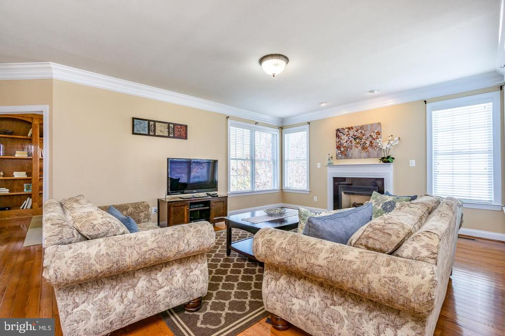 Spacious family room w/gas fireplace - 43604 HABITAT CIR, LEESBURG