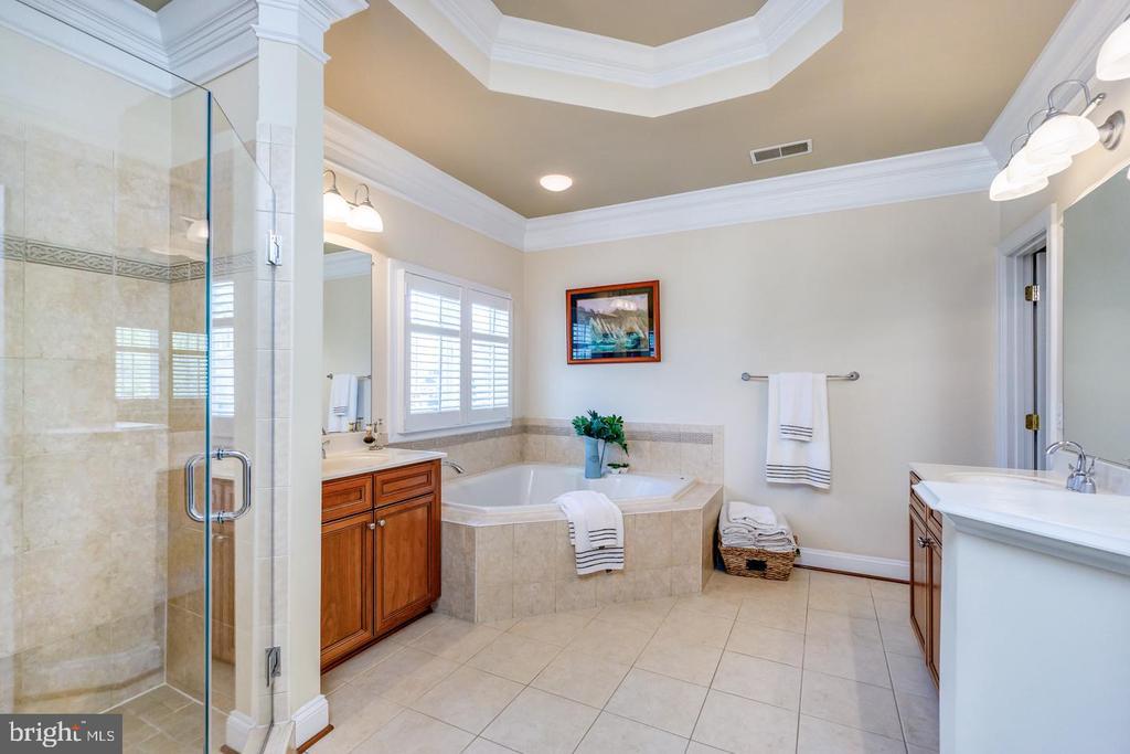 Luxurious owner's bath w/tray ceiling - 43604 HABITAT CIR, LEESBURG
