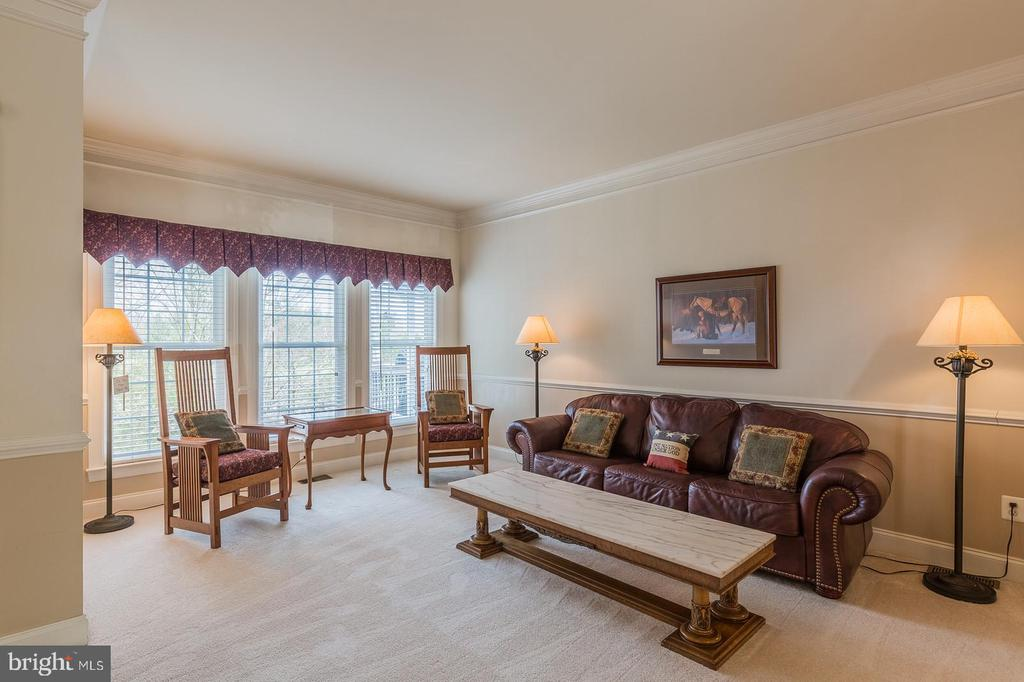 BRIGHT, SPACIOUS LIVING ROOM - 25657 TREMAINE TER, CHANTILLY