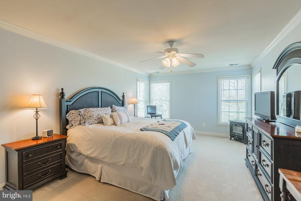 SPACIOUS MASTER BEDROON - 25657 TREMAINE TER, CHANTILLY
