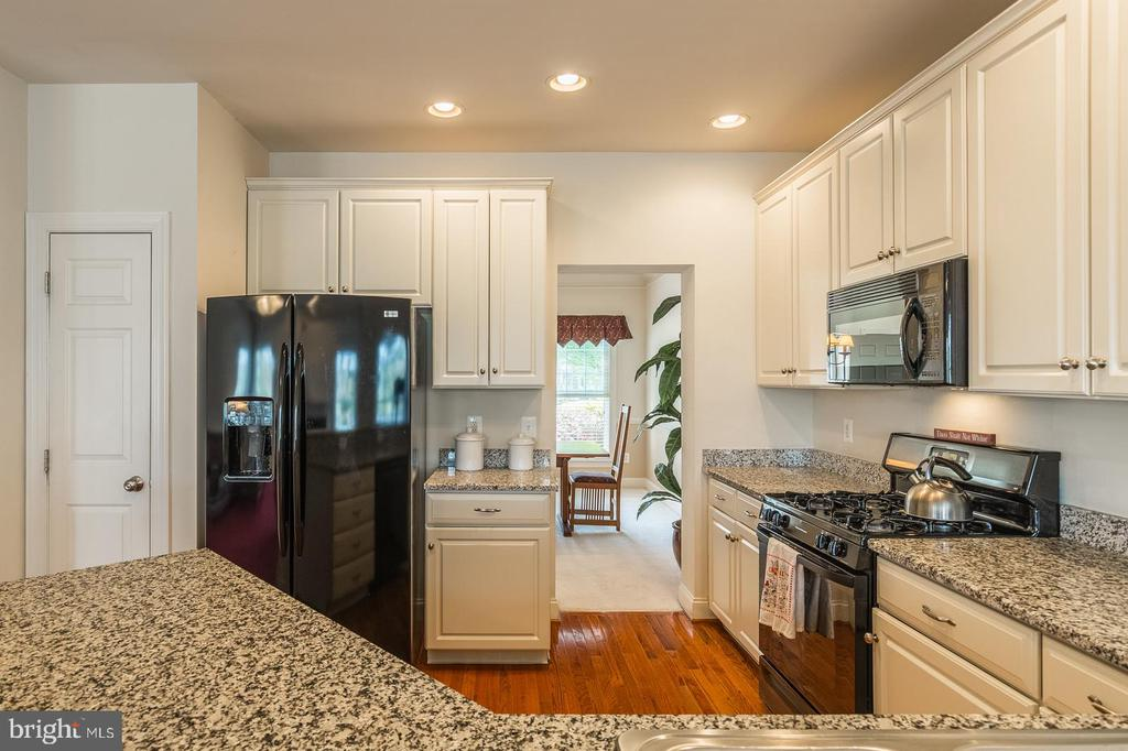 UPGRADED APPLIANCES - 25657 TREMAINE TER, CHANTILLY