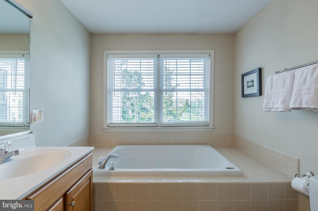 LARGE SOAKING TUB - 25657 TREMAINE TER, CHANTILLY