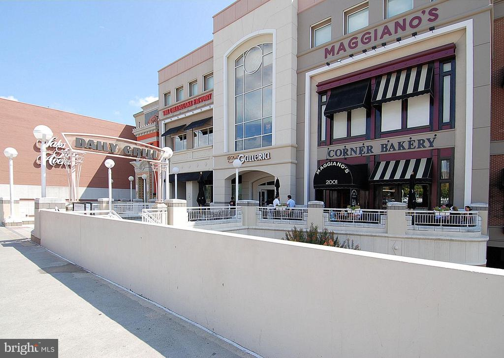 Shopping and restaurants galore! - 1577 LEEDS CASTLE DR #101, VIENNA
