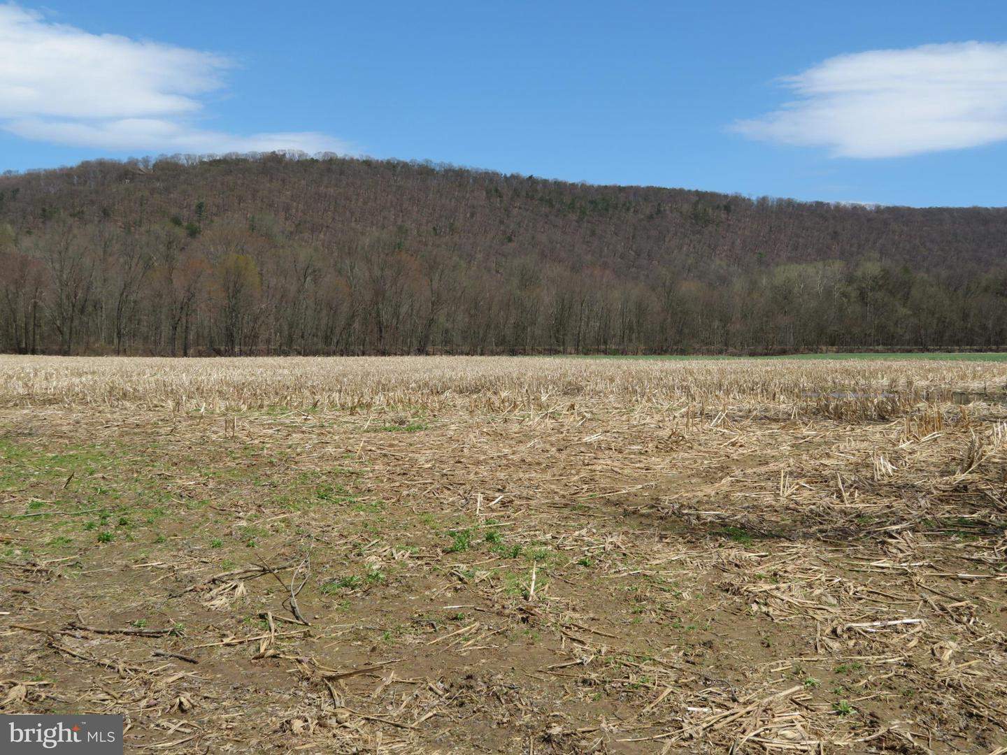 Land for Sale at Paxinos, Pennsylvania 17860 United States