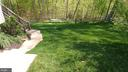 Recently sodded backyard - 53 SENTRY CT, STAFFORD
