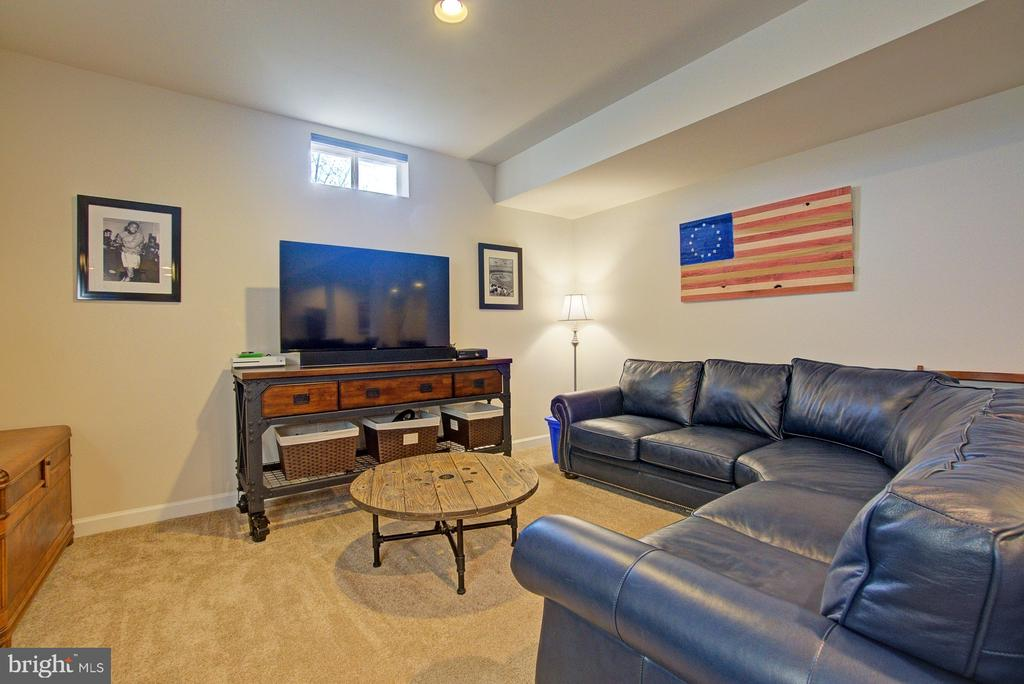 Lower level rec room - 39561 CHARLES HENRY PL, WATERFORD