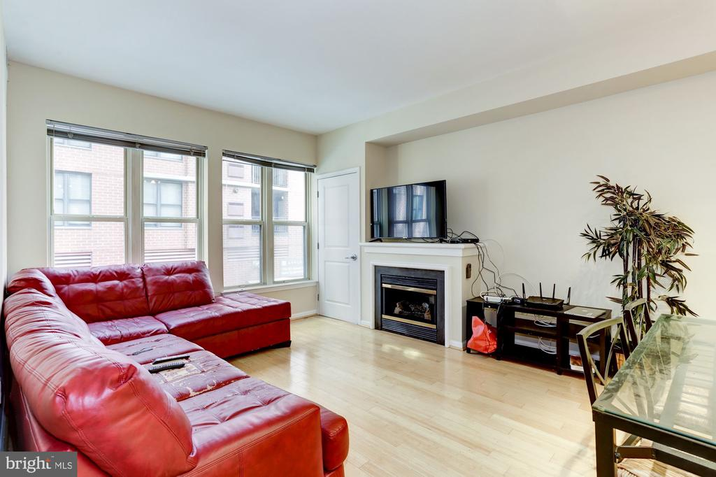 Living Room with Gas Fireplace - 715 6TH ST NW #205, WASHINGTON