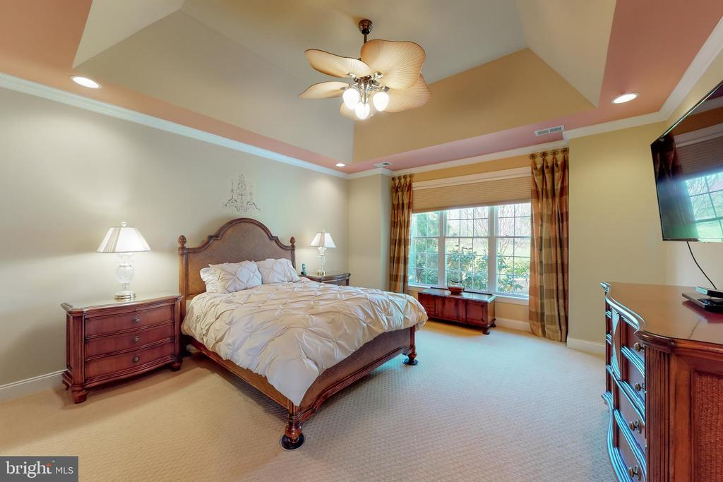 Expanded Master Bedroom*Green view* - 5242 ARMOUR CT, HAYMARKET