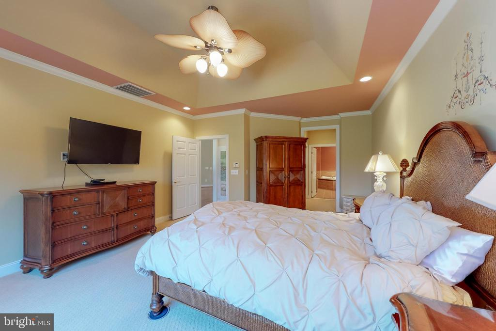 Details like tray ceiling make a difference! - 5242 ARMOUR CT, HAYMARKET