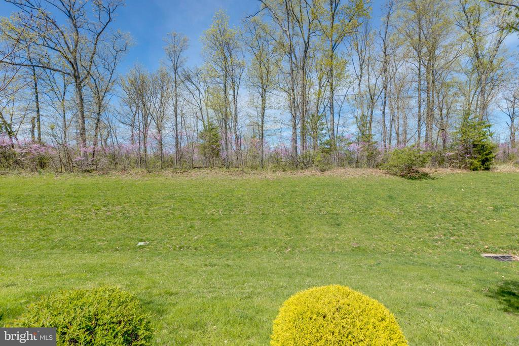 Year round nature views from inside and out! - 5242 ARMOUR CT, HAYMARKET