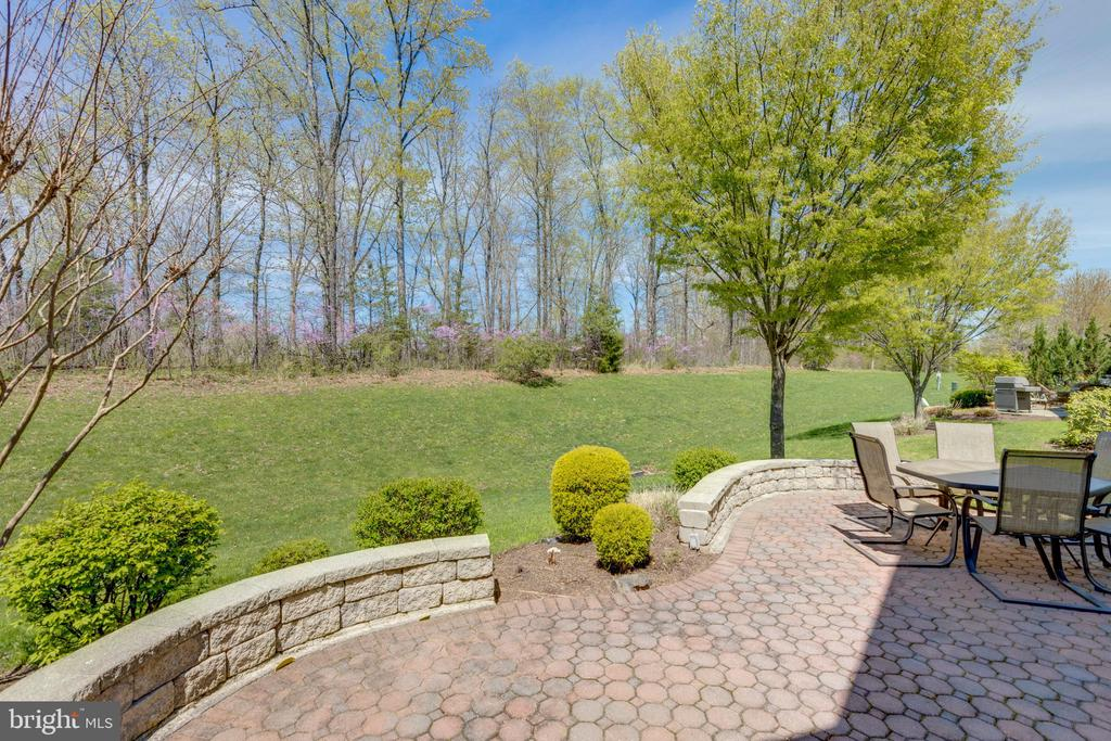 Stone/paver patio is aesthetically pleasing - 5242 ARMOUR CT, HAYMARKET