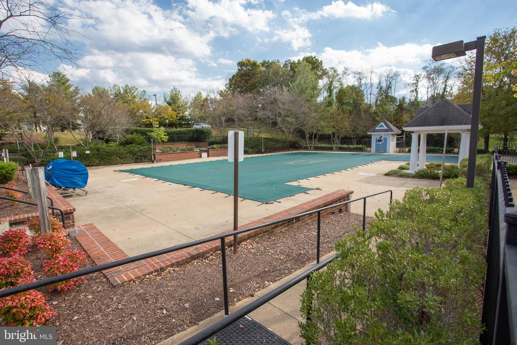 Walk across the street to the community pool. - 79 NORTHAMPTON BLVD, STAFFORD