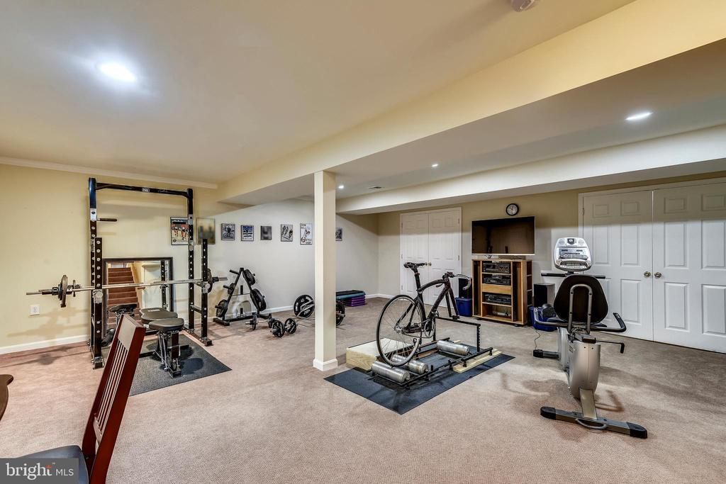 Lower Level II, Exercise, Media or Playroom. - 3140 TRENHOLM DR, OAKTON