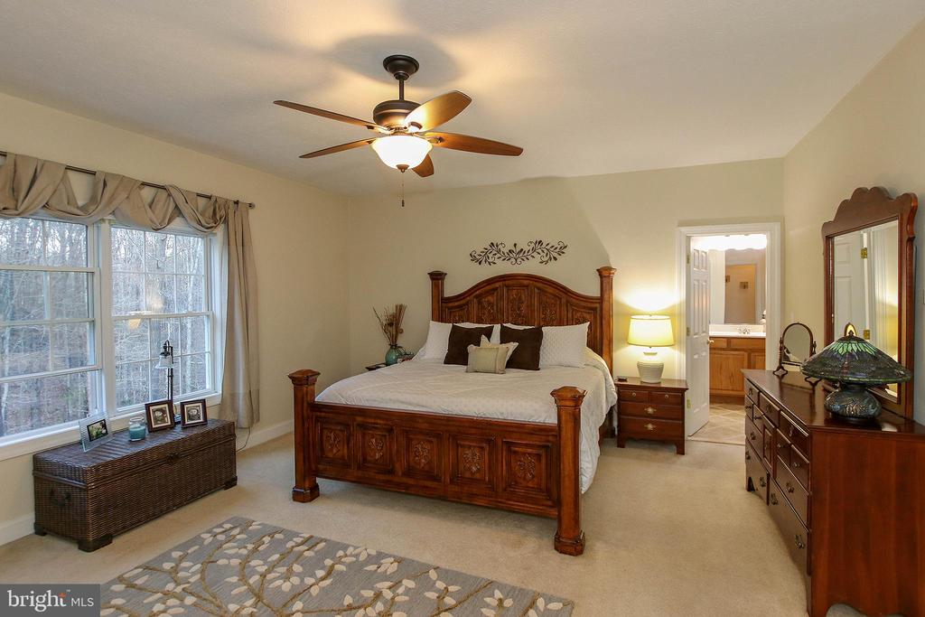 Sweet dreams come easy in this lovely Master Suite - 800 CATTAIL RD, WINCHESTER