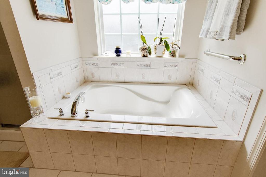 Sunny Master Bath - 3413 LAKEVIEW PKWY, LOCUST GROVE