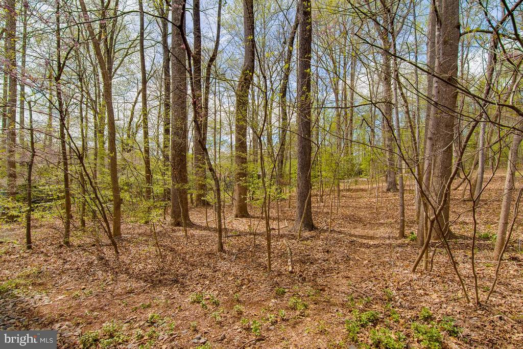 Wooded private backyard - 3413 LAKEVIEW PKWY, LOCUST GROVE