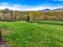 Open land ideal for horses - 43 GRUNKLE LN, FLINT HILL