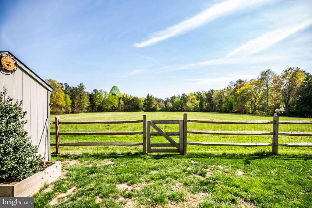 Large open field in back yard. - 12 ADLER LN, FREDERICKSBURG