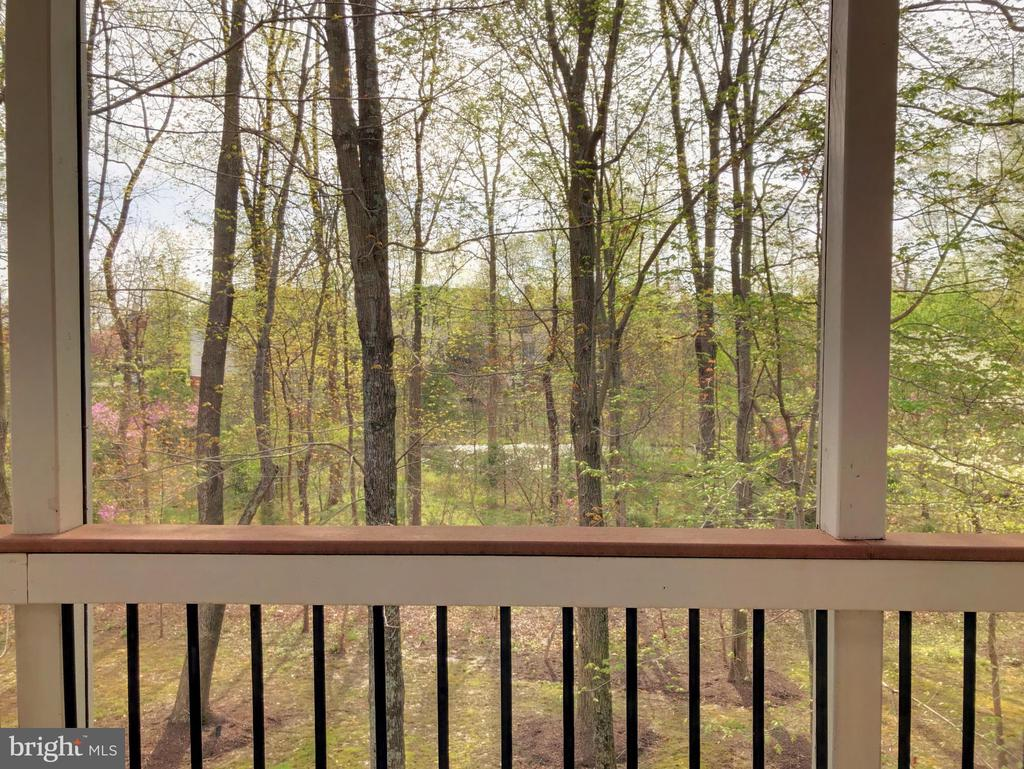 Screened porch view - 20145 BLACK DIAMOND PL, ASHBURN