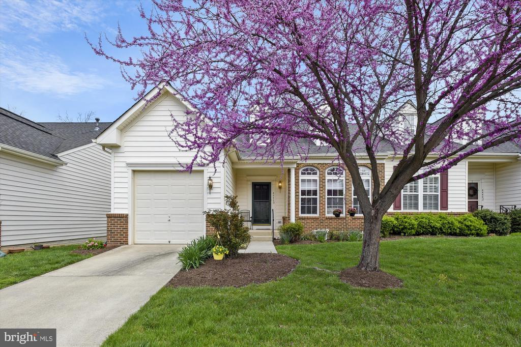 44440  LIVONIA TERRACE, Ashburn Village, Virginia