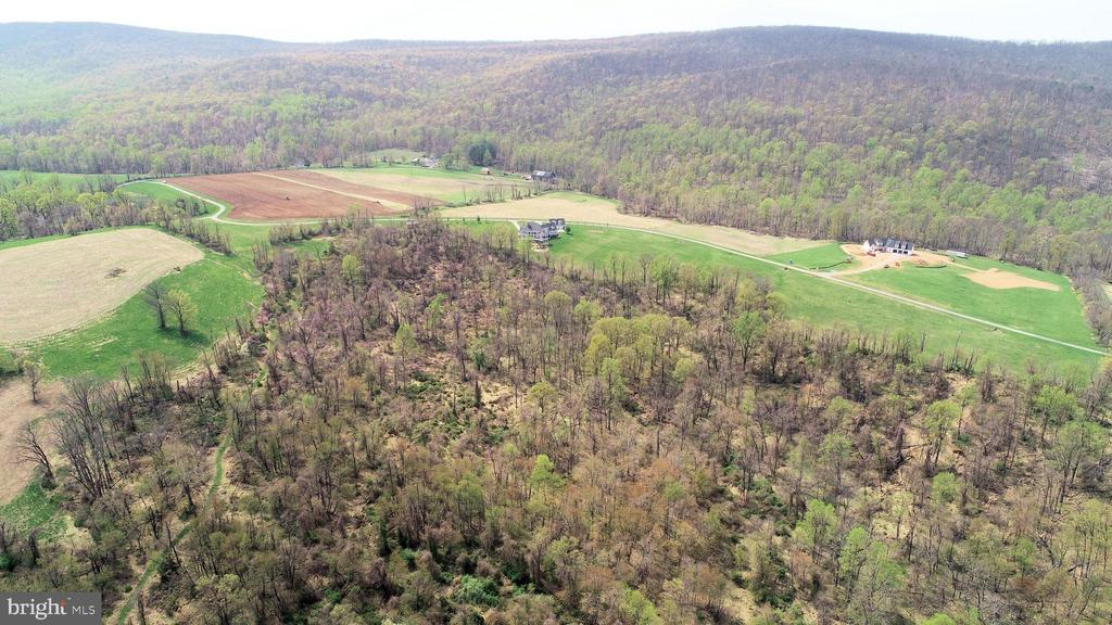 1 mile of cleared trails on your private property - 14720 SUMMIT VIEW, PURCELLVILLE