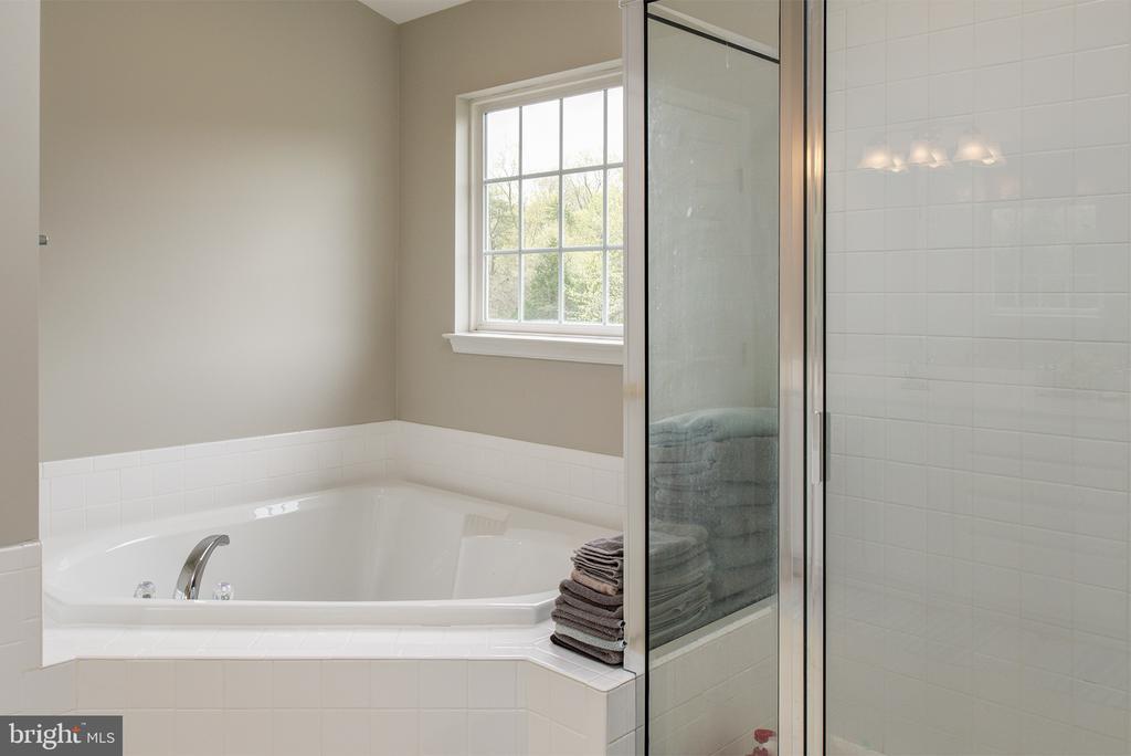 Master bedroom soaking tub - 11384 FALLING CREEK DR, BEALETON