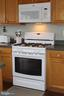 Gas cooking! brand new gas stove w/convection oven - 20980 STRAWRICK TER, ASHBURN