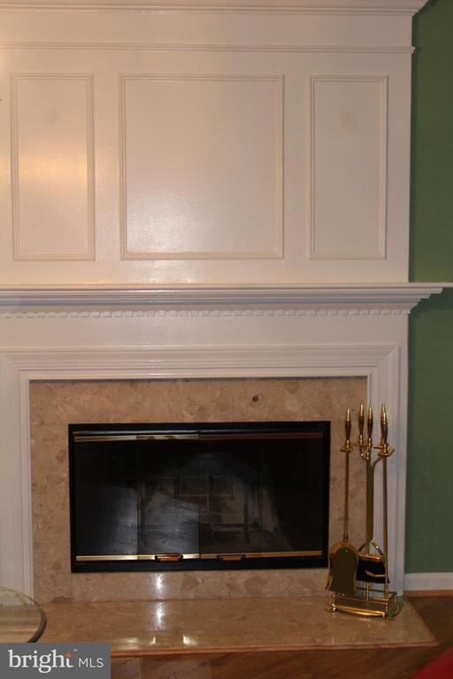 fireplace - 20980 STRAWRICK TER, ASHBURN