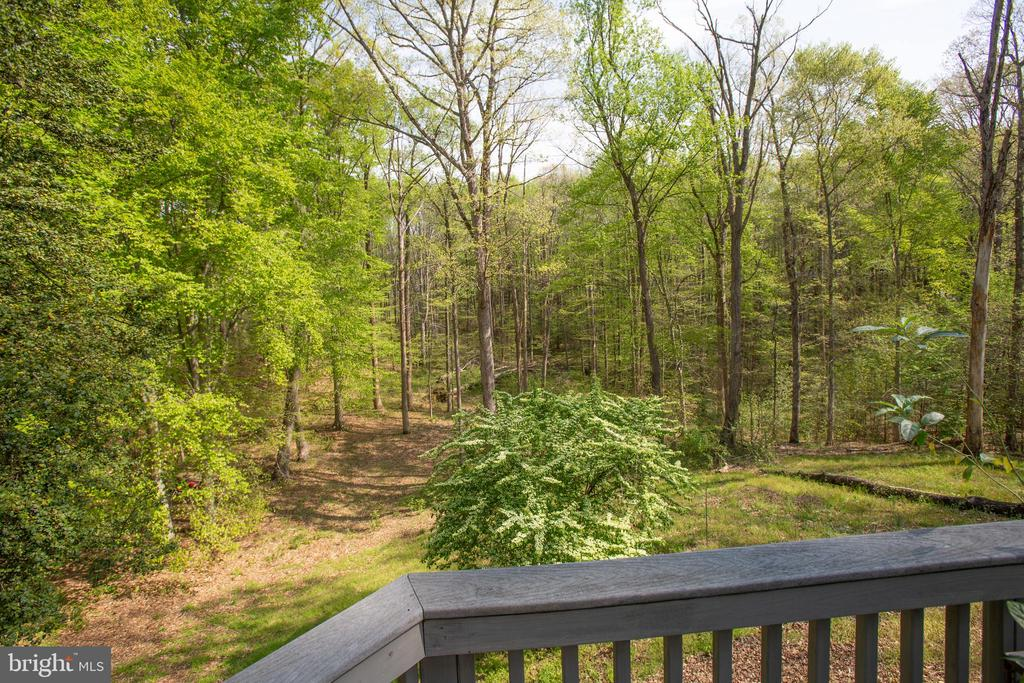 Looking out from the Deck - 20 BOB WHITE LN, STAFFORD
