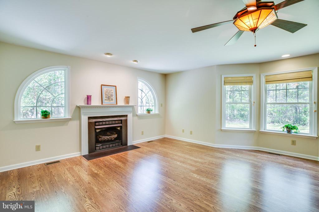 Check out the fireplace in the family room - 8427 BATTLE PARK DR, SPOTSYLVANIA