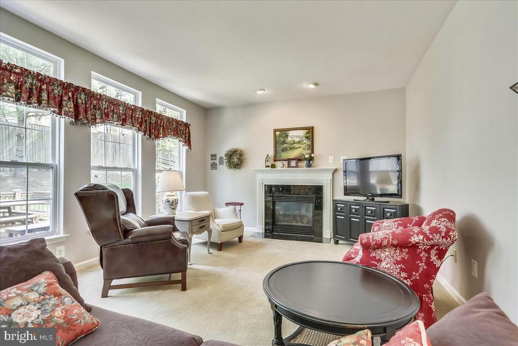 Family room - 14027 BRIARWICK ST, GERMANTOWN